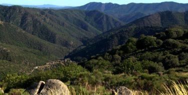 Montagne Ardéchoise
